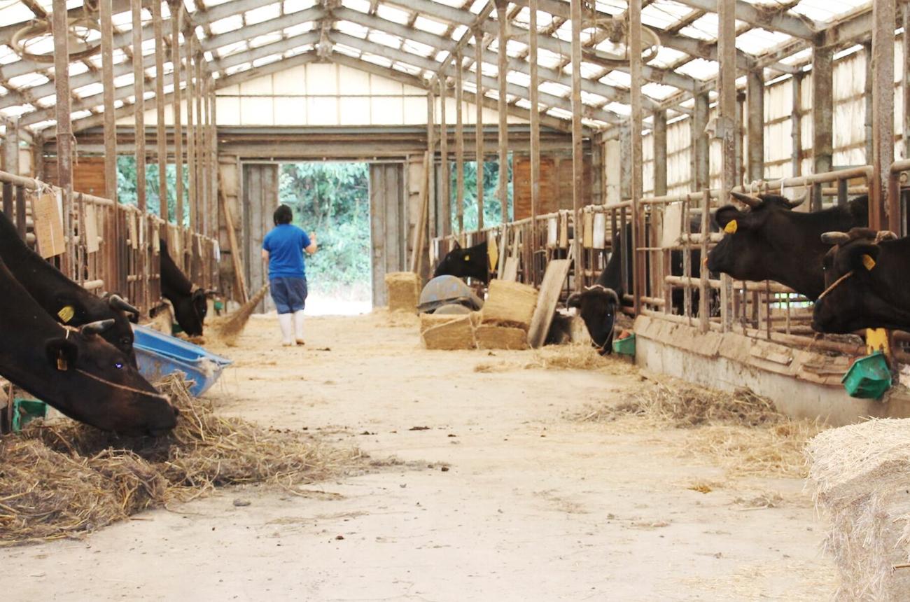 スタッフ全員で「長州ながと和牛」を全力で推進していく